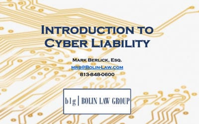An Introduction to Cyber Liability